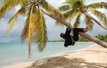 Plage des Antilles - Homme en costume grimpant  un cocotier
